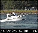 -white_power_boat_20181010.jpg